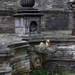 SunDhara, Bikkil Sthapit